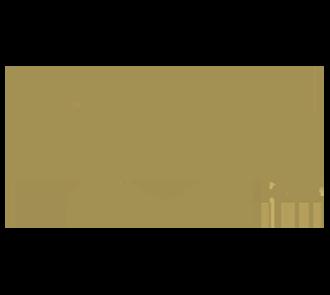 ICAR-Gold-Class-330w